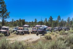 legends-rally-baja-pine-forest-loop-093