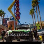 Canidae 2013 Mint 400